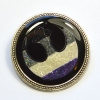 Ace Flag Asexual Rebel Alliance Star Wars Glitter Brooch